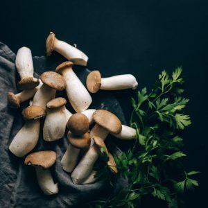 Wholesale Mushrooms